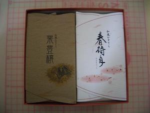 b090109-WKasutera1.JPG