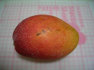 b080718-Mango3.JPG