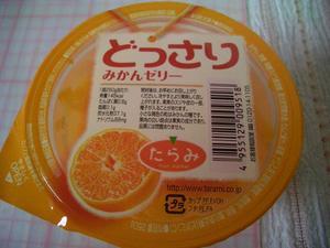 b081121-Tarami1.JPG