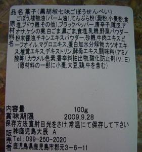 b090827-GoboChips3.JPG