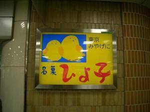 b100312-TokyoHiyoko.JPG