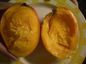 b100603-Mango3.JPG
