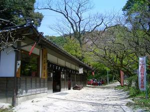 b110426-OishiChaya2.JPG